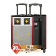 新科 T501 广场舞移动拉杆音响 户外插卡电瓶音箱大功率