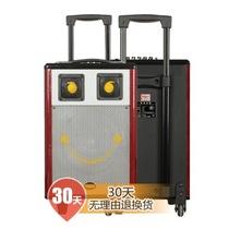 新科 T501 广场舞移动拉杆音响 户外插卡电瓶音箱大功率产品图片主图