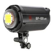 金贝 EF-100 EF-200常亮灯 太阳灯 视频拍摄艺术人像 实景棚拍LED摄影灯 EF-100