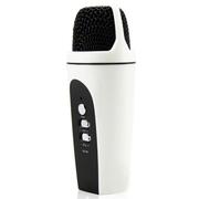 apphome 手机唱吧麦克风 电脑K歌YY抢麦专用电容麦克风 扩音录音设备 随身话筒 苹果版白色