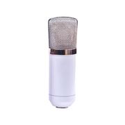 喜木 麦克风 广播录音录歌电容麦 录音室专用话筒  电脑主播必备套装 白色银色网头