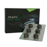 马孚多路片 美国(清洁型)燃油添加剂 提升油品 清除积碳 提升动力 改善尾气 M13C 6粒