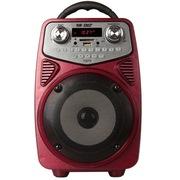 先科 天韵9号 广场舞音箱 晨练户外音响 便携式大功率扩音器插卡拉杆音箱