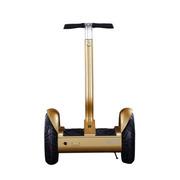 风彩 升级版城市智能体感平衡车 自平衡陀螺仪电动车车 锂电池代步思维车 土豪金