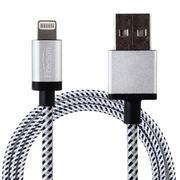 Freeson 苹果MFI认证Lightning USB数据线/充电线 1米 银色