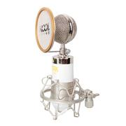 Capshi 专业电容K歌唱吧电脑麦克风 BM-v668 麦克风 白色
