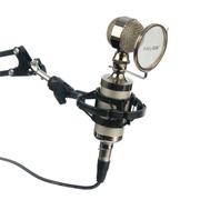 魅声 小奶瓶电容麦克风 电脑网络录音家用K歌专用话筒 YY喊麦主持卡拉OK 银色