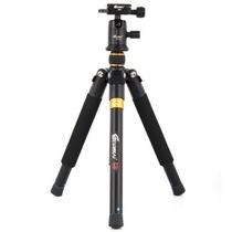 锐玛 TP-250 三脚架 旅游三角架 便携 专业单反相机数码三脚架云台产品图片主图