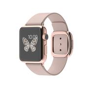 苹果 Apple Watch Edition 智能手表(灰色/38毫米表壳/现代风扣式表带)