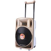 科王 P-10F广场舞音响 10寸户外音箱 土豪金插卡U盘无线蓝牙FM便携拉杆有源电瓶大功率 土豪金 标配