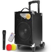 纽曼  SM-898A 8寸户外拉杆音箱 广场舞音响 便携式大功率扩音器 带无线麦克风话筒