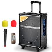纽曼  301D 10寸广场舞音箱 蓝牙户外音响 便携式拉杆音箱 大功率扩音器带无线麦克风