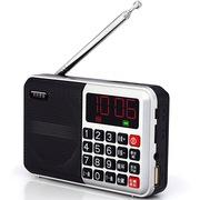 月光宝盒 爱国者(aigo)S1-Pro 银色 便携式插卡音箱 迷你音响 FM收音机 可连U盘手机
