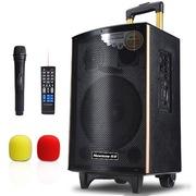 纽曼  SM-1600D 拉杆音箱广场舞户外音响 便携式低音炮音箱移动扬声播放器扩音带无线麦克风