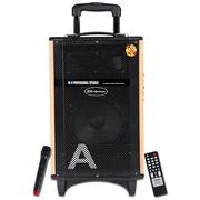 金正 AVS-618F(黄金甲12号)12寸广场舞音响户外蓝牙音箱 插卡扩音器拉杆音箱(黑色)