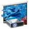 飞利浦 PPX PPX4010 投影仪 微型投影机 笔记本伴侣 口袋手持 手机同屏 高清投影 1080P 银色产品图片3