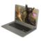 戴睿  D17 14英寸 四核 时尚超薄笔记本电脑  学习影音笔记本 炫白银 四核 4G内存 320G硬盘产品图片2