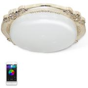 飞亚讯(FeiYaXun) FL-05003 APP智能变色LED吸顶灯 卧室浪漫情调灯具 餐厅照明 全彩变光 多功能
