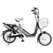 台铃 电动自行车 48V锂电池电动车16寸助力电单车 小霏铃 变色龙