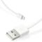 Snowkids 苹果MFi认证数据线旅充套装 (1A单USB口充电器+1.2米线)白色 适用于iPhone6S/6SP/6P/6/5S/5C/5产品图片4