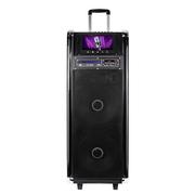 先科 A22双12寸大功率户外拉杆广场舞音响带DVD视频机移动电瓶音箱