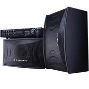 金正 SM-981 家庭KTV音响套装专业舞台会议卡拉ok卡包音箱 (黑色)