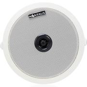 金正 A6-2 天花吸顶喇叭同轴高音 定阻定压功放两用 工程会议别墅背景音乐音箱 6.5寸 (白色)