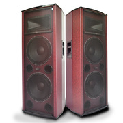 双诺 SA6502 12寸专业舞台音响 大功率户外广场舞音响会议蓝牙音箱 落地式对箱