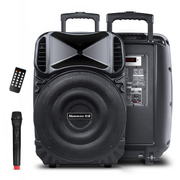 纽曼 KW-225 15英寸拉杆音箱 会议户外广场舞音响 便携式插卡蓝牙大功率扩音器 带无线麦克风话筒