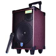 双诺 SN-08 8英寸低音 广场舞拉杆音箱 无线麦克风户外移动音响 便携式大功率扩音器 深红色