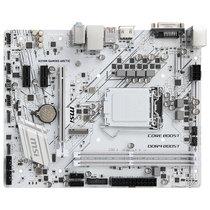 微星 H310M GAMING ARCTIC极地板主板(Intel H310/LGA 1151)产品图片主图