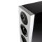 狄分尼提 Demand D15落地音箱产品图片2